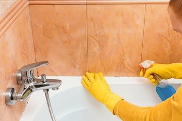 cleaning mold off bathtub