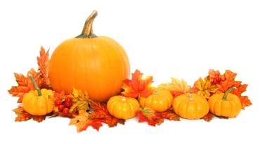 Ordinary_Pumpkins