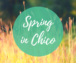 Spring Living in Chico