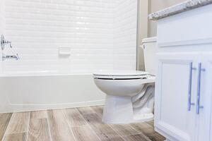 modern bathrub and toilet