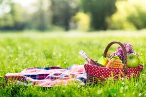 picnic in grass