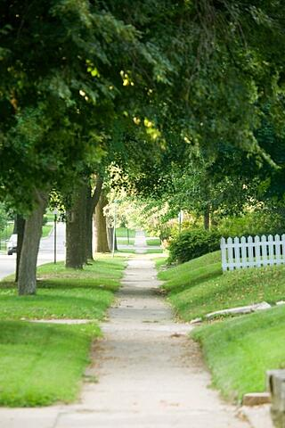 sidewalk white picket fence and lush trees