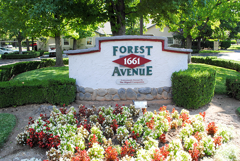 forest avenue sign