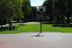 Cropped_Basketball_Net